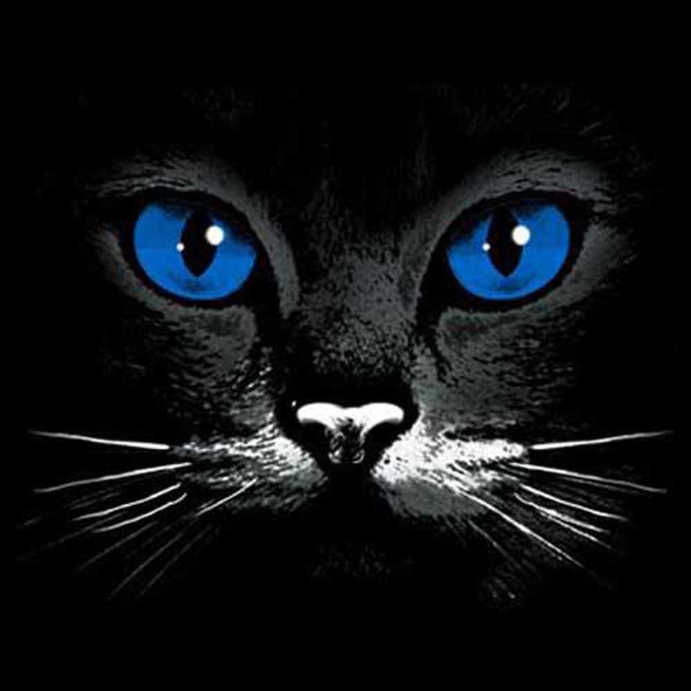 Sweatshirt Cats Eye