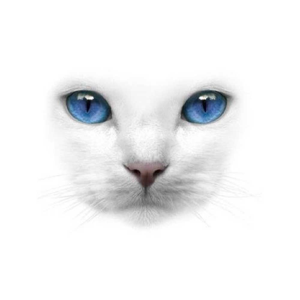 White Cat Face with Blue Eyes T-Shirt - For The Love of Cat!